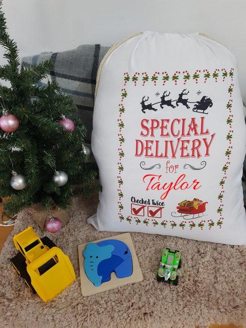 Santa Sack – Special Delivery